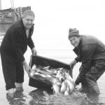 риба тер